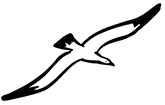Logo der Möwen-Apotheke