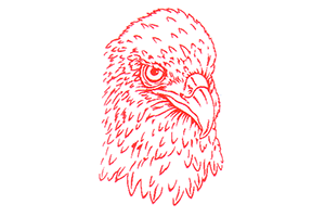 Logo der Adler-Apotheke Ruhrort