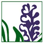 Logo der Lavendel Apotheke