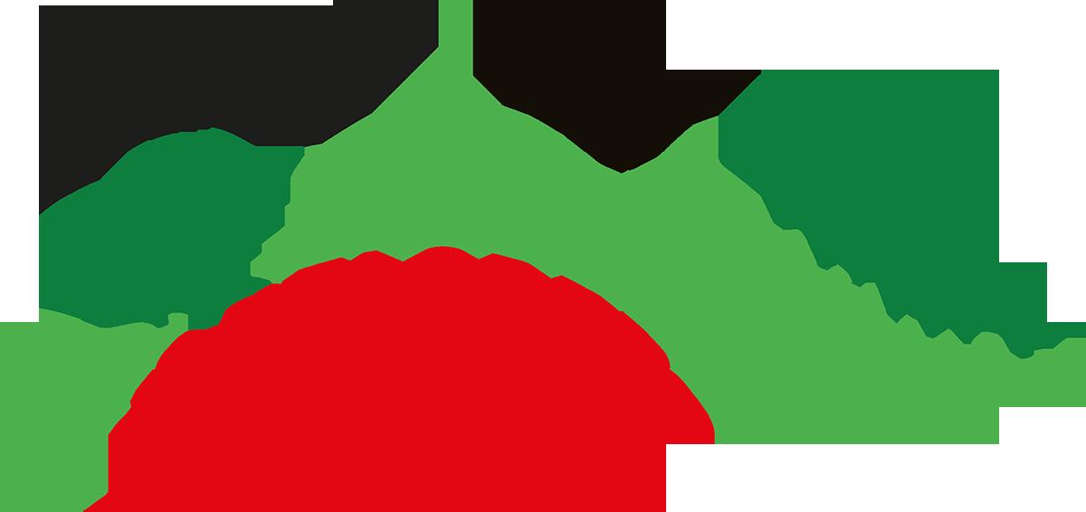 Logo der Vogelsberg-Apotheke