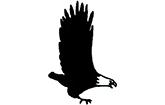 Logo der Adler-Apotheke-Schweinau e.K.
