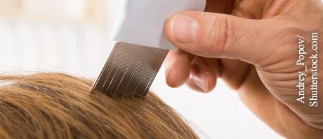 Was hilft gegen Kopfläuse?