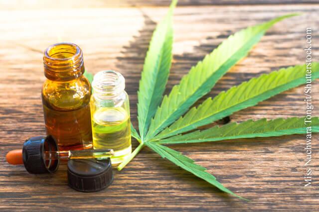 Cannabis als Medikament sicher