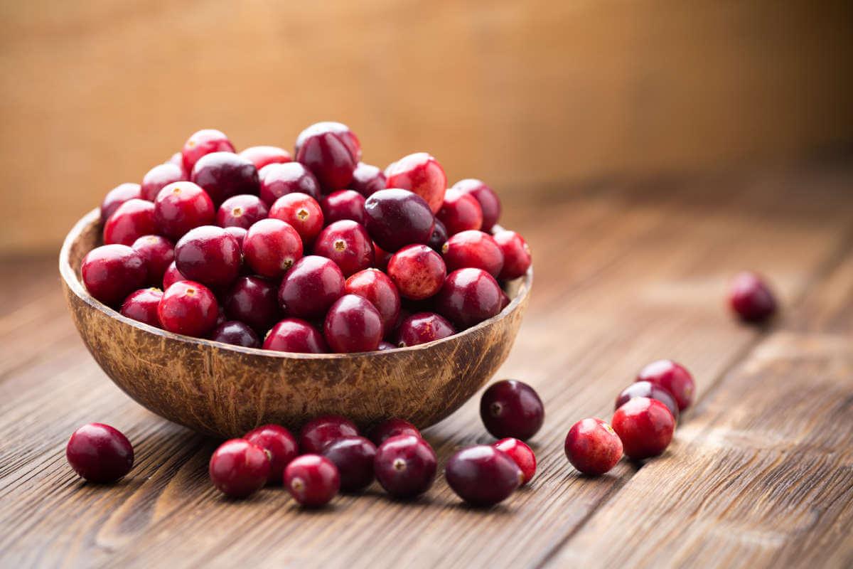 Nahrungsergänzung im Blick: Cranberry-Produkte