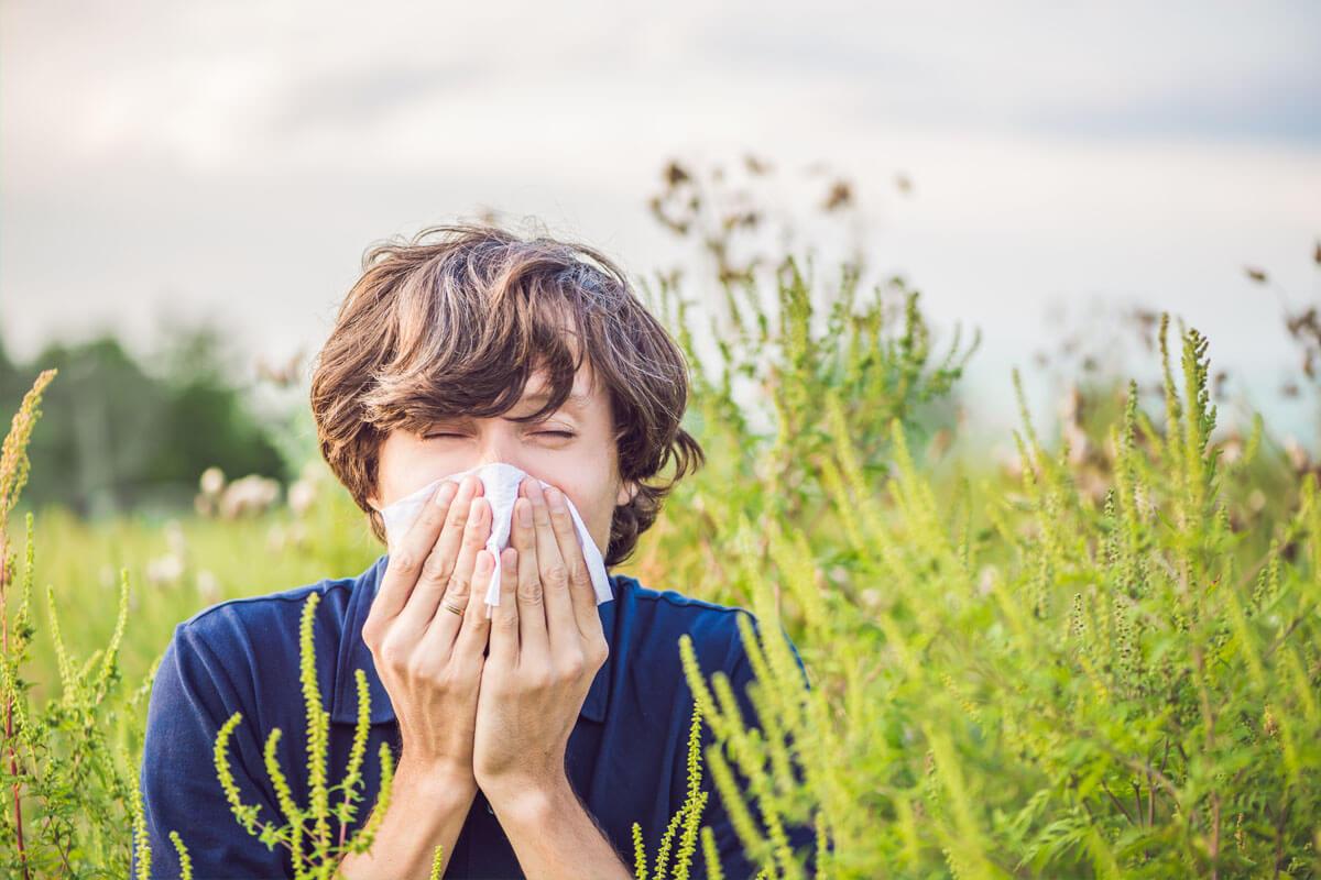 Nasenscheidewandverengung