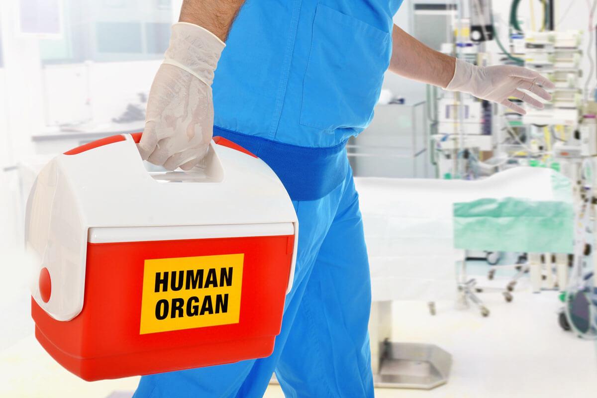 2020: So viele Organe wurden gespendet