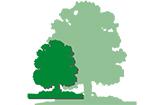Linden-Apotheke Zschopau Logo