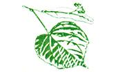 Linden-Apotheke Gerswalde Logo