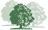 Park-Apotheke Prenzlau Logo