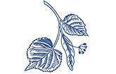 Linden-Apotheke Nico Bödewig e.K. Stuhr Logo