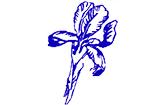 Iris-Apotheke Mönchengladbach Logo