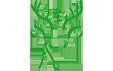 Hubertus-Apotheke Solingen Logo