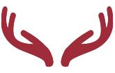 Hubertus-Apotheke Legden Logo