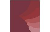 Adler Apotheke Siegburg Logo