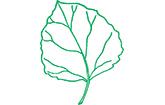 Espen-Apotheke Burgthann Oberferrieden Logo